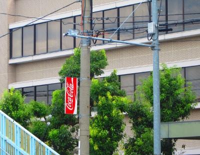 コカコーラ缶・司法書士佐田撮影